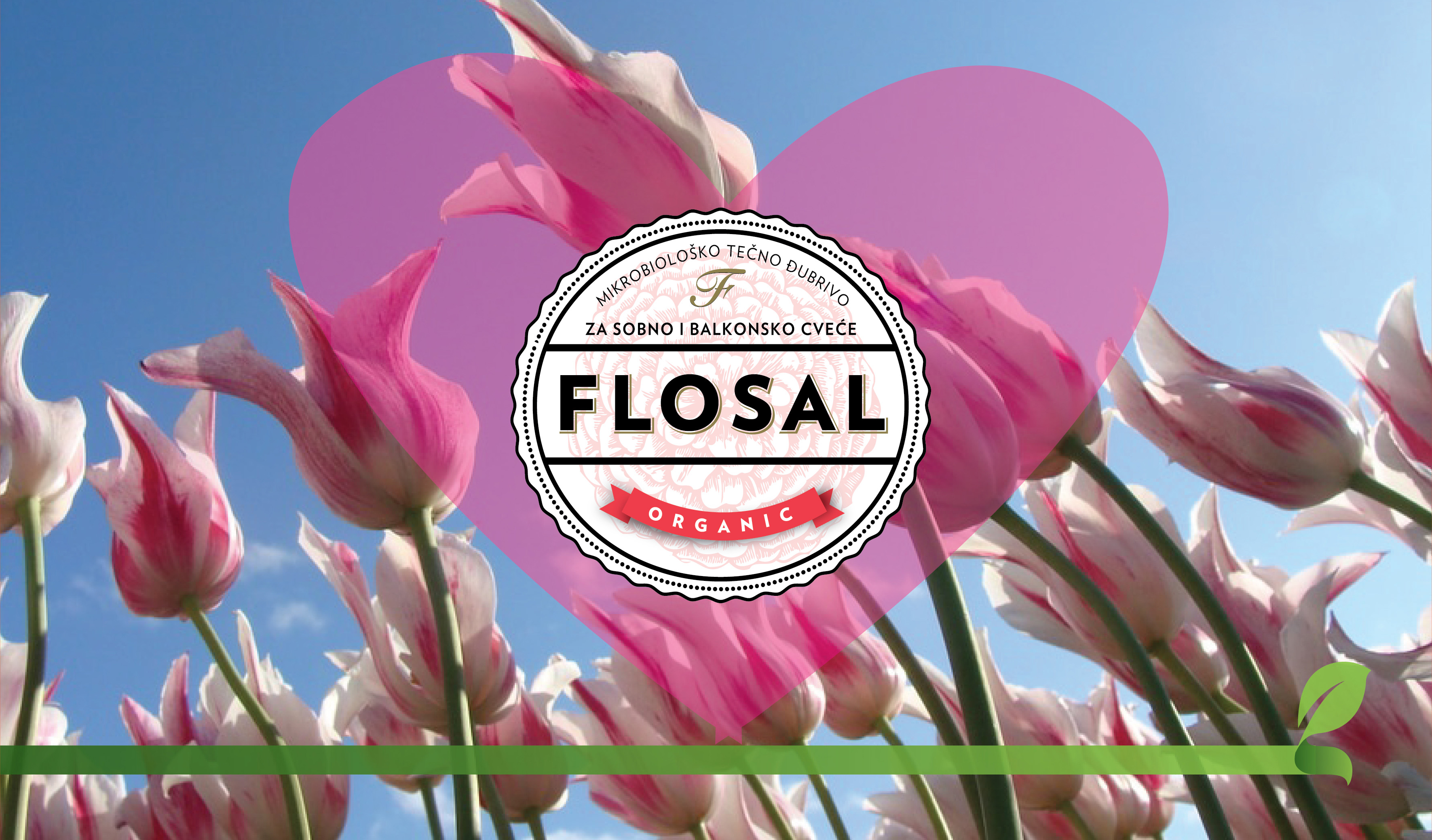 Dobrodošli u Flosalovu cvetnu porodicu